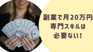 副業で月20万円専門スキルは必要ない