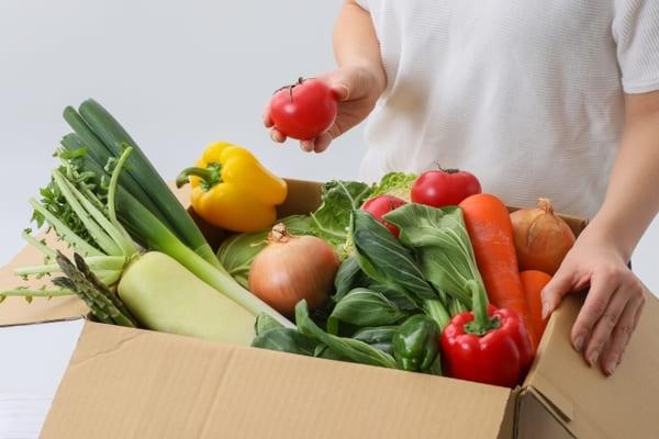 野菜の食材宅配サービス